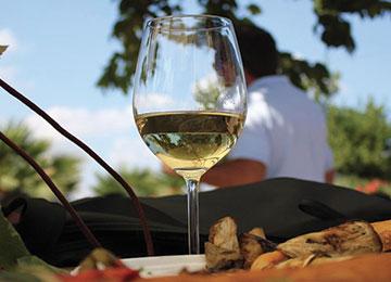 Les vins Siciliens, un pur régal